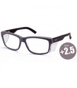 Gafas graduadas +2.5 - Compra online en Prosegtar